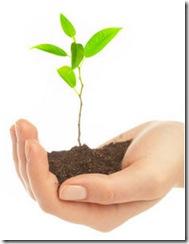 sustentabilidade-agricultura